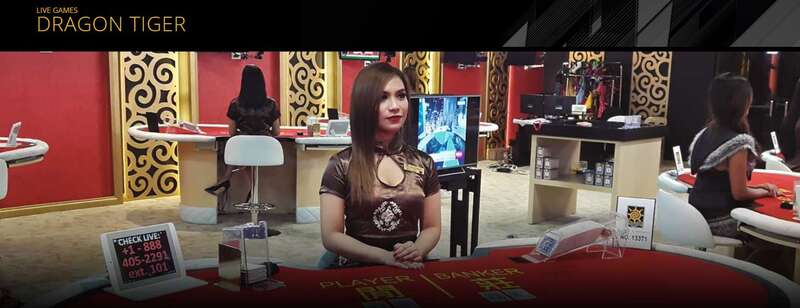 Basic Rules in Playing Dragon Tiger Gambling - HD Streaming Live